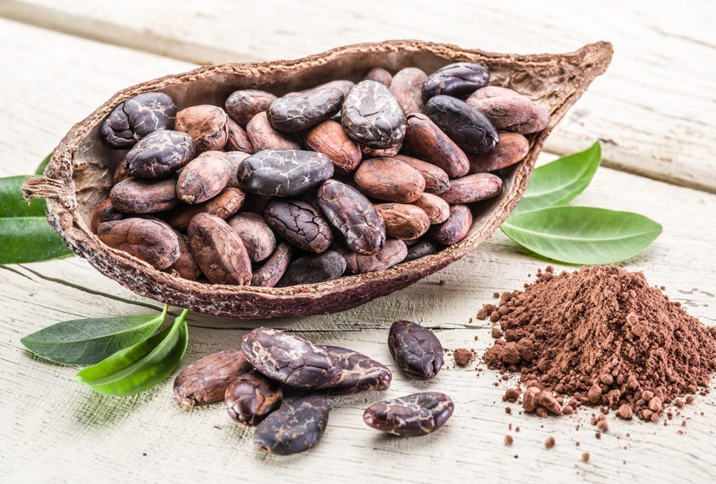 Cocoa pods and ground chocolate poweder