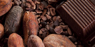 Cocoa beans and pods.